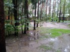 5 сентября, т/б =Нара=, дождь...
